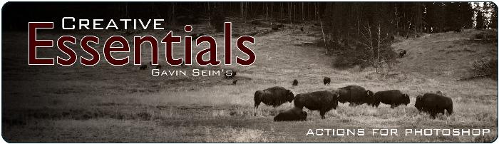 Creative Essentials 1 6  Free Update  - Seim - Master